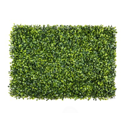 Boxwood Wall FW022