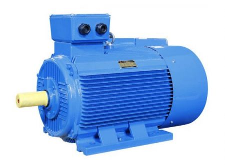 Paragon PEM Series Electric Motor