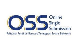 Pembuatan Izin UMKM secara on line di OSS
