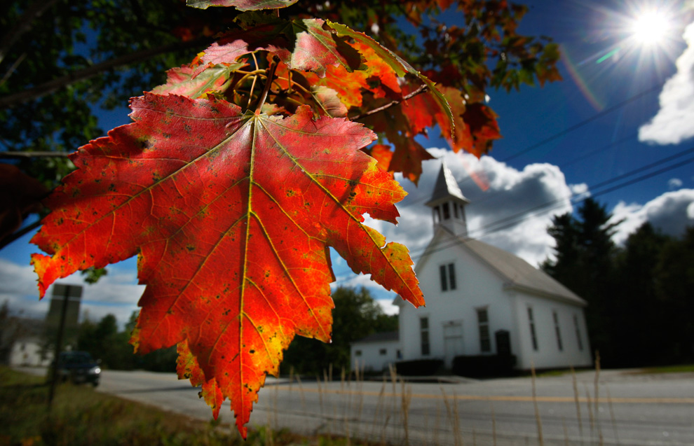 Image result for image, photo, picture, autumn, boston.com