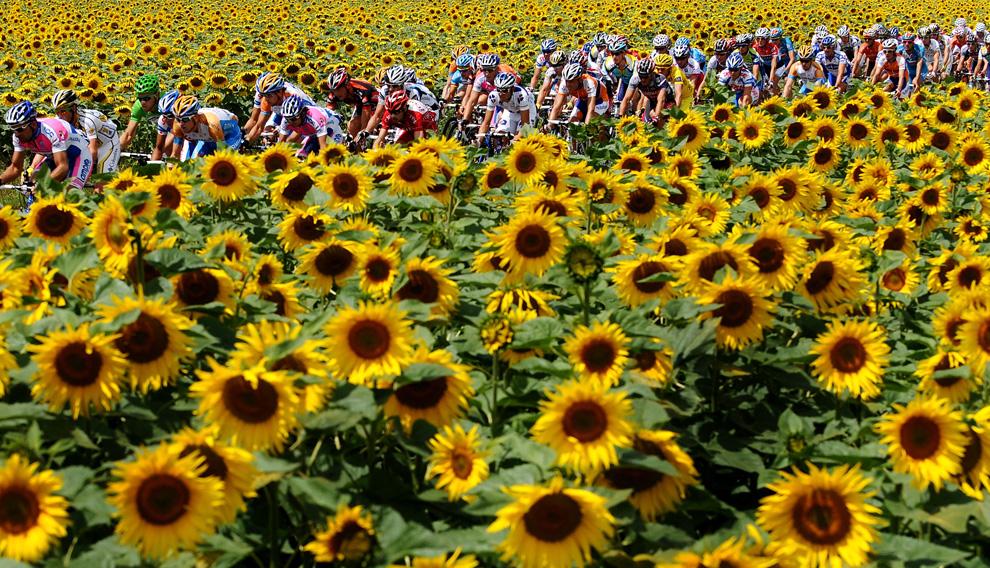 The peloton near Vatan, France, via The Big Picture