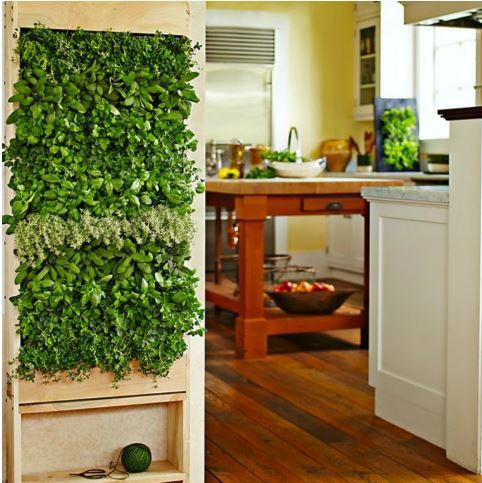 jardines-verticales-interiores-cocina-pequeno