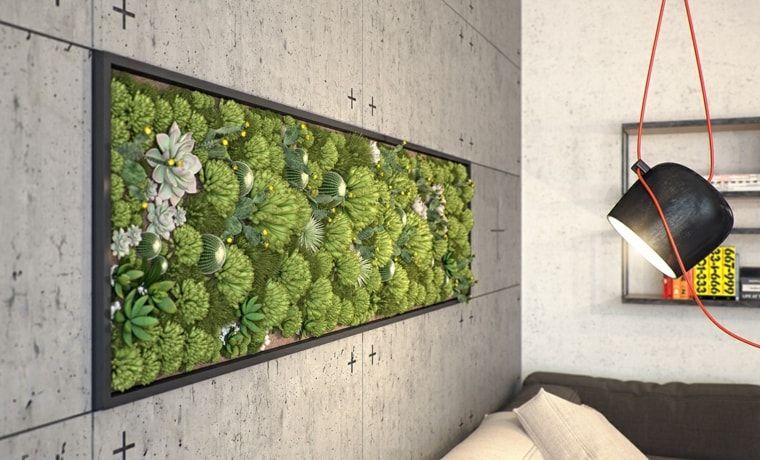 jardines-verticales-interiores-cuadro-pared