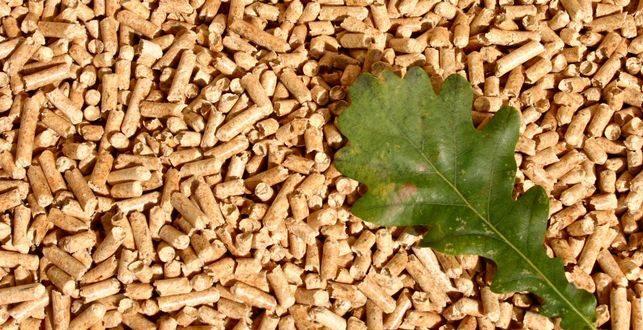 generacion-distribuida-biomasa