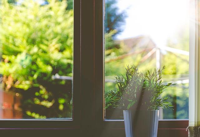 diseno-interiores-eco-friendly