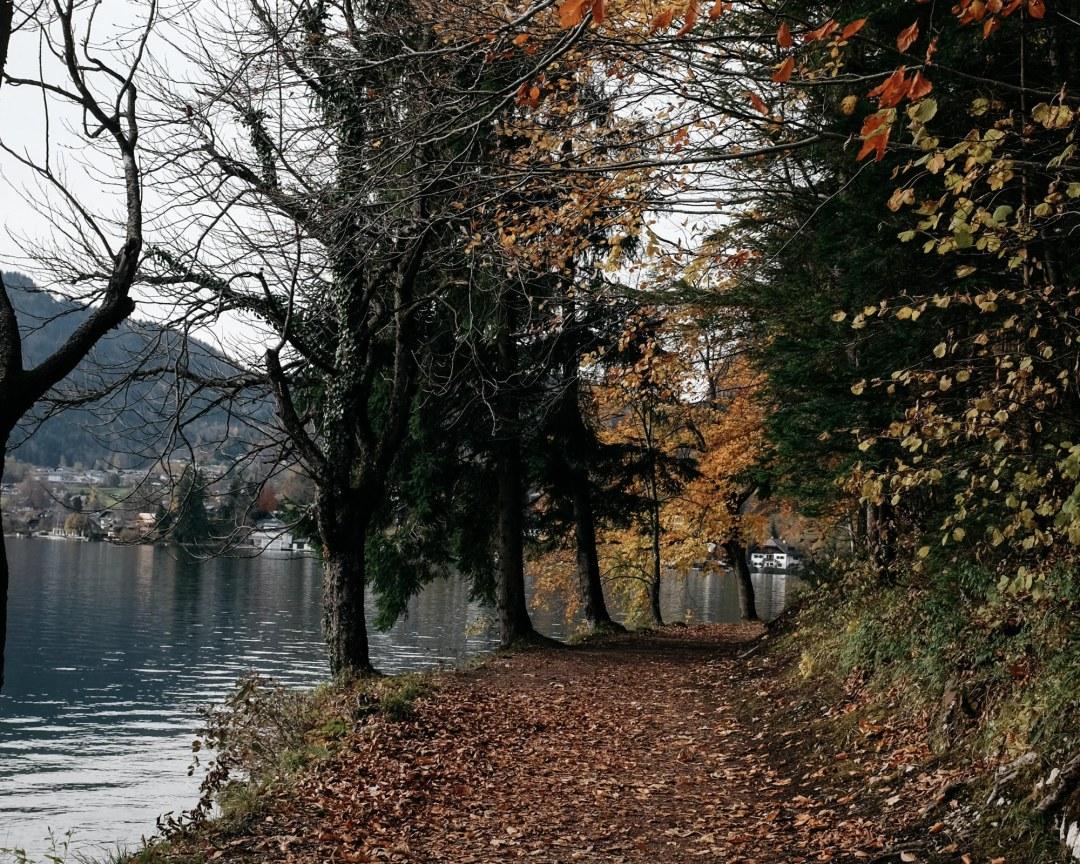 DSCF0360.autumncolours herbststimmung wolfgangsee salzburgerland