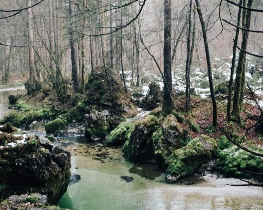 ina stil inastil bluntautal winterstimmung decoration weihnachten salzburgerland winterspaziergang homedecoration winterwalkDSCF0640