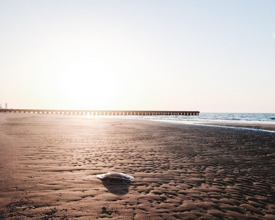 inastil, Ü50Blogger, Italien, Venedig, Jesolo, Kurzurlaub, Venedigtrip, Frühling am Meer,_-15