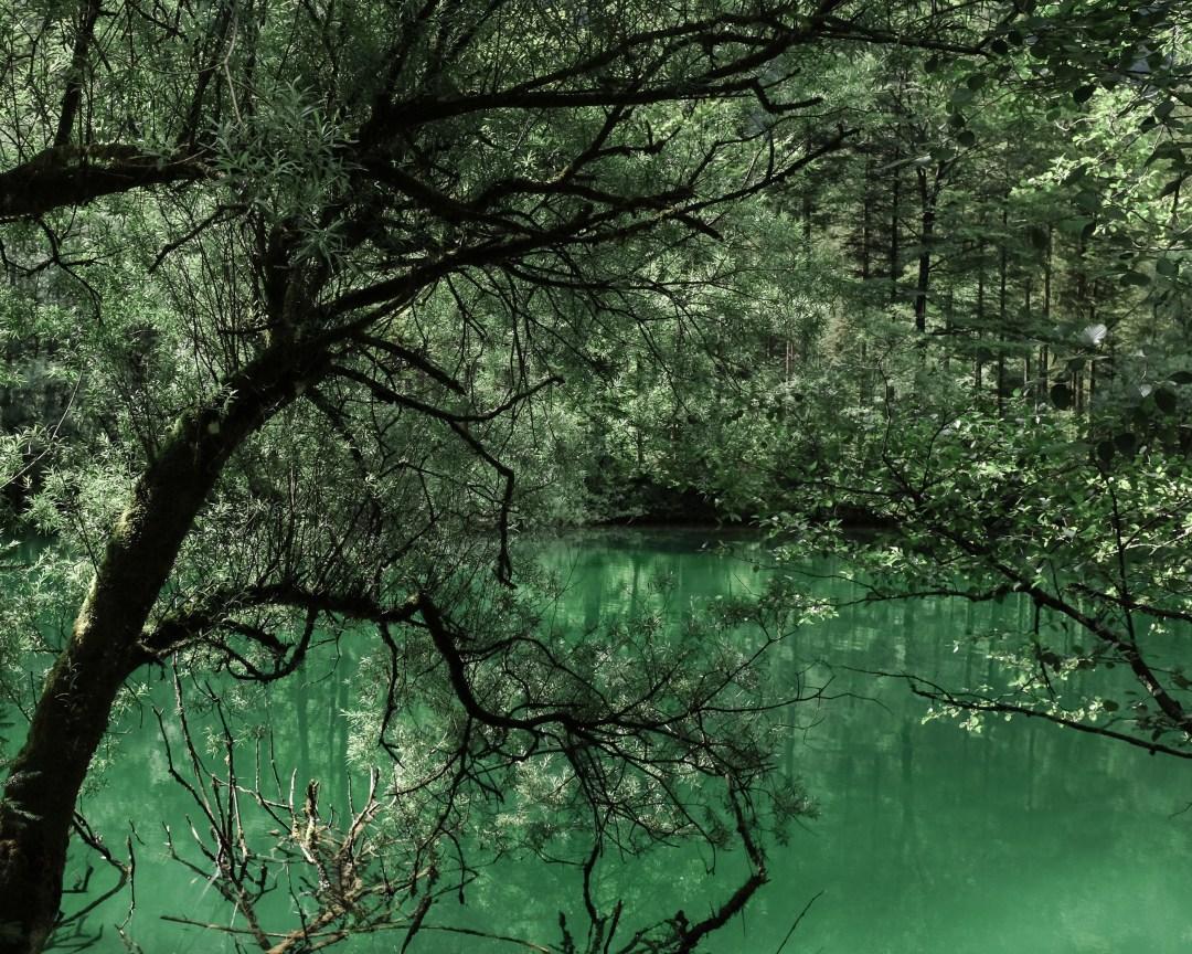 inastil, Bluntautal,Salzburgerland,Tennengau Landschaft. Landscape Sommermenue Gurken Avocado Suppe gedeckter Tisch,Tablesetting Nachspeise Ingwerzitronenschaum Dessert-9
