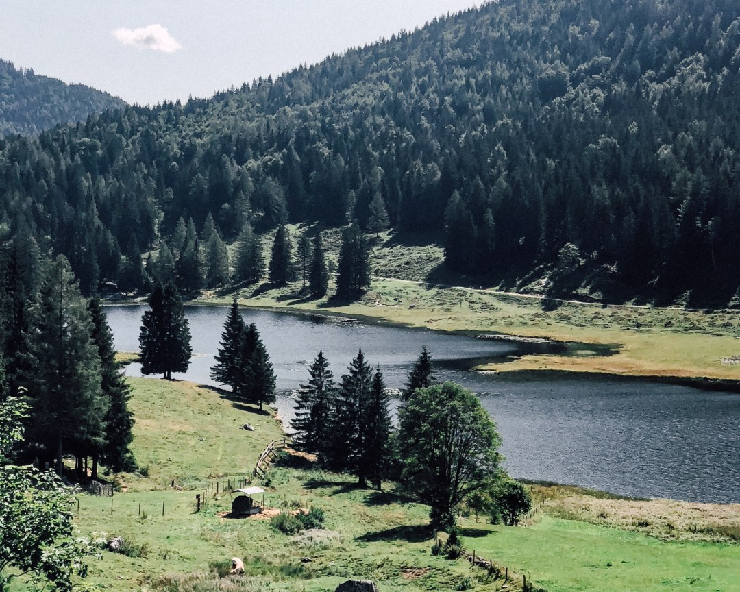 inastil, Seewaldsee, sommerzeit, sommerinösterreich, salzburgerland, ü50blogger, MTB-Tour, Tennengau, E-Mountainbike, Almjause, Sport, Bergsee,_-9
