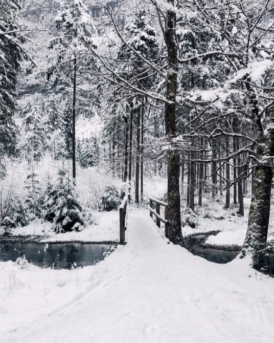 inastil, weihnachten, christmas, salzburgerland, winterwonderland, salzburg, philharmonie salzburg, Schneelandschaft, ü50blogger,-10