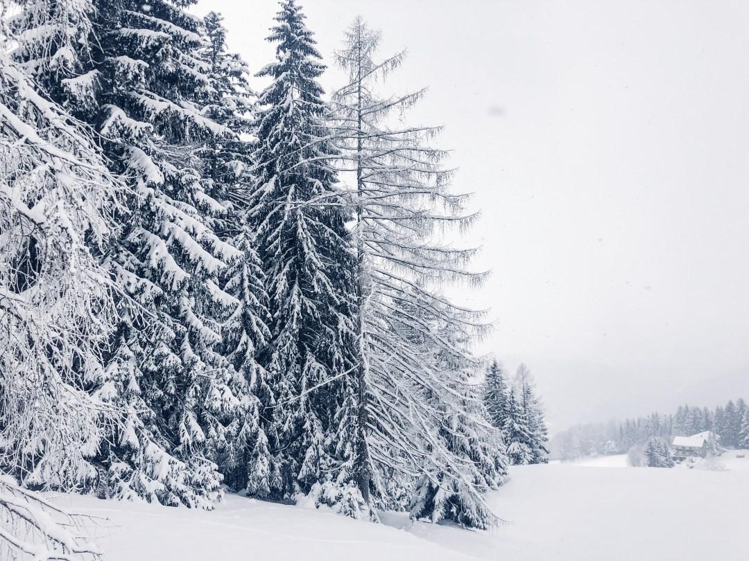inastil, weihnachten, christmas, salzburgerland, winterwonderland, salzburg, philharmonie salzburg, Schneelandschaft, ü50blogger,-11