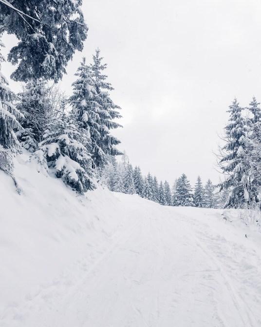 inastil, weihnachten, christmas, salzburgerland, winterwonderland, salzburg, philharmonie salzburg, Schneelandschaft, ü50blogger,-13