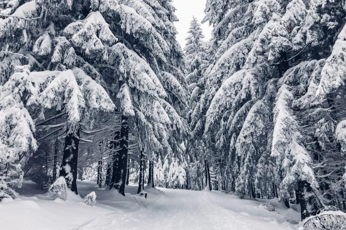 inastil, weihnachten, christmas, salzburgerland, winterwonderland, salzburg, philharmonie salzburg, Schneelandschaft, ü50blogger,-15