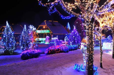Live Nativity Scene on Family Salaj Estate Grabovnica, Cazma near Zagreb, Croatia