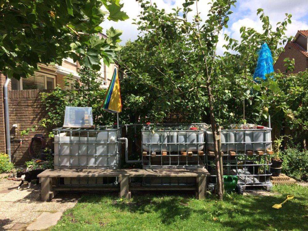 Netherland's Backyard Aquaponic