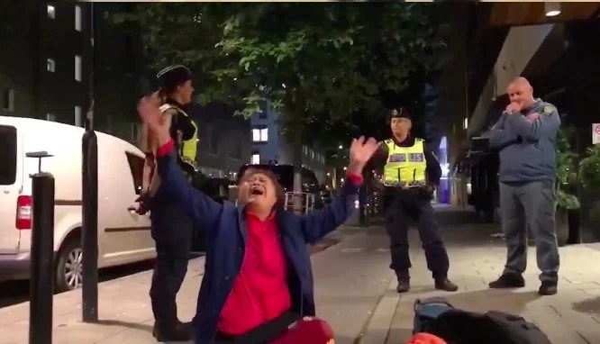 "All the details you need on the Chinese tourists who were ""brutally"" handled by Swedish police"