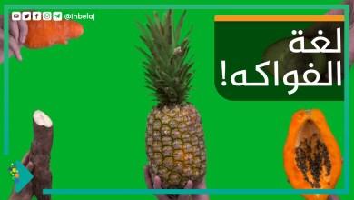 صورة لغة الفواكه!