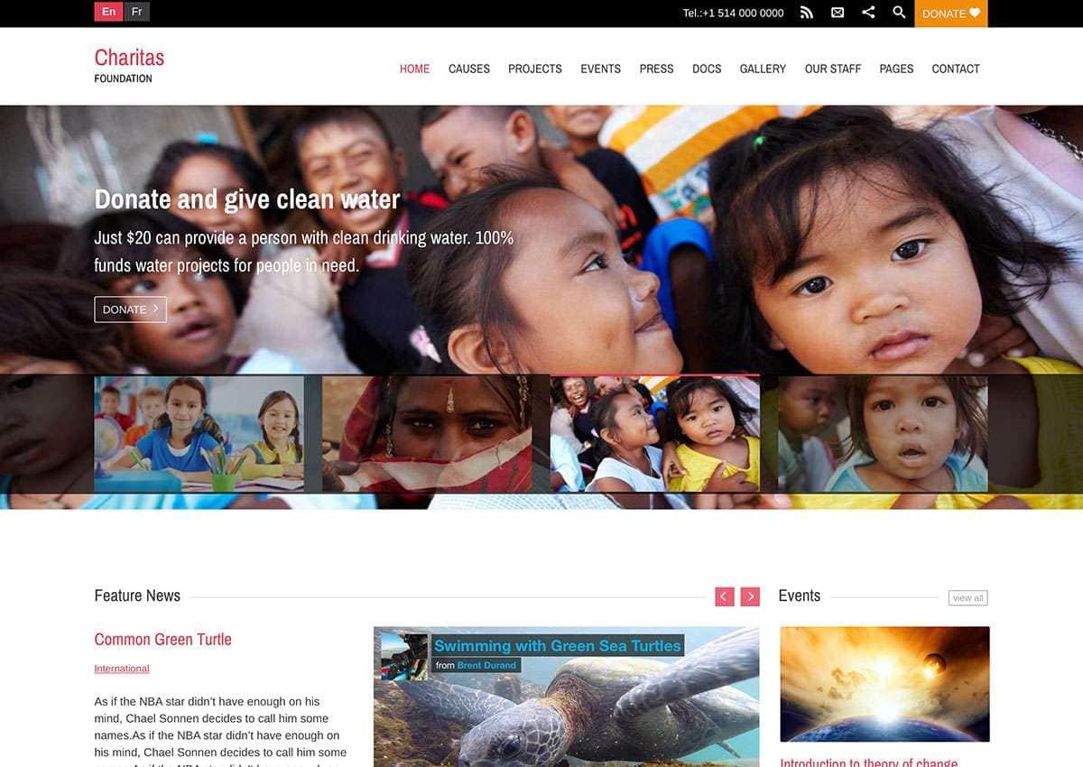 WordPress для благотворительных организаций1
