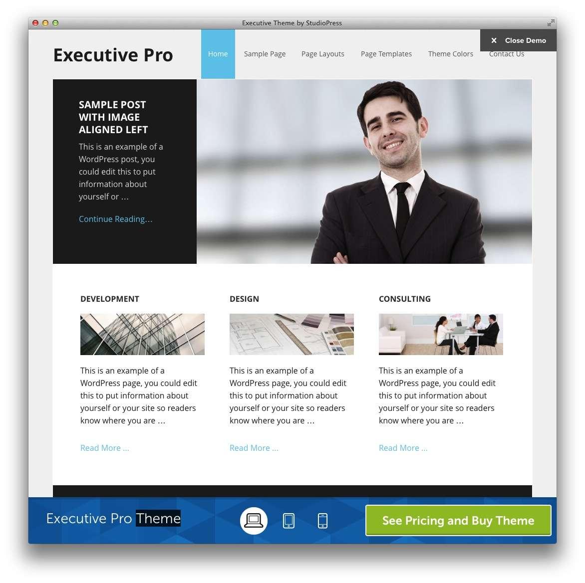 WordPress – Адвокаты и юридическая практика15