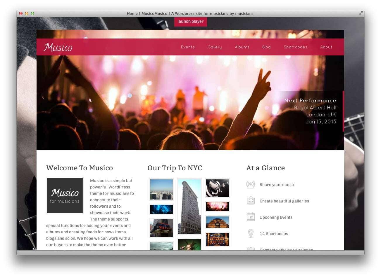 музыкальные темы WordPress8