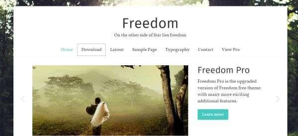 Скачать бесплатные шаблоны–темы Вордпресс для фотографа