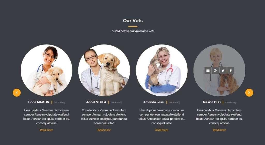 готовый шаблон сайта ветеринарной клиники на WordPress 2016