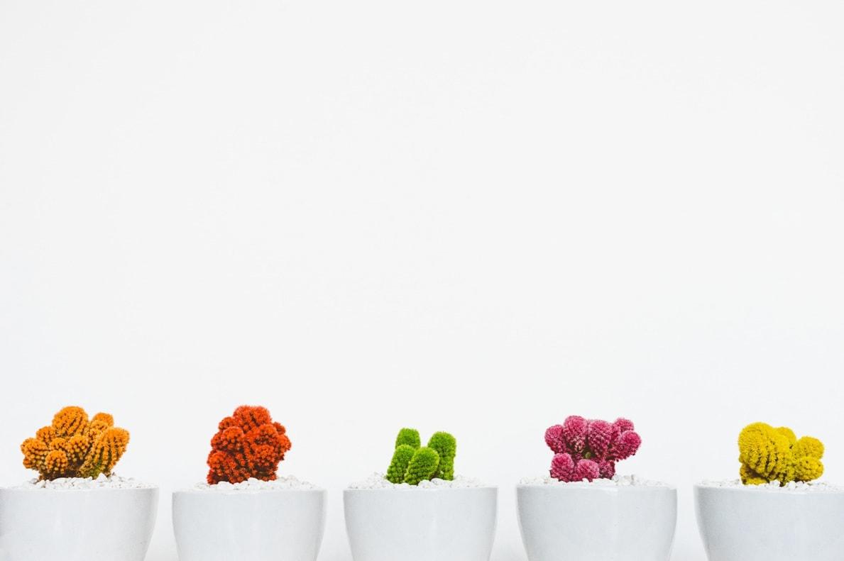 вариативный товар WooCommerce: продажа товаров на любой вкус 1