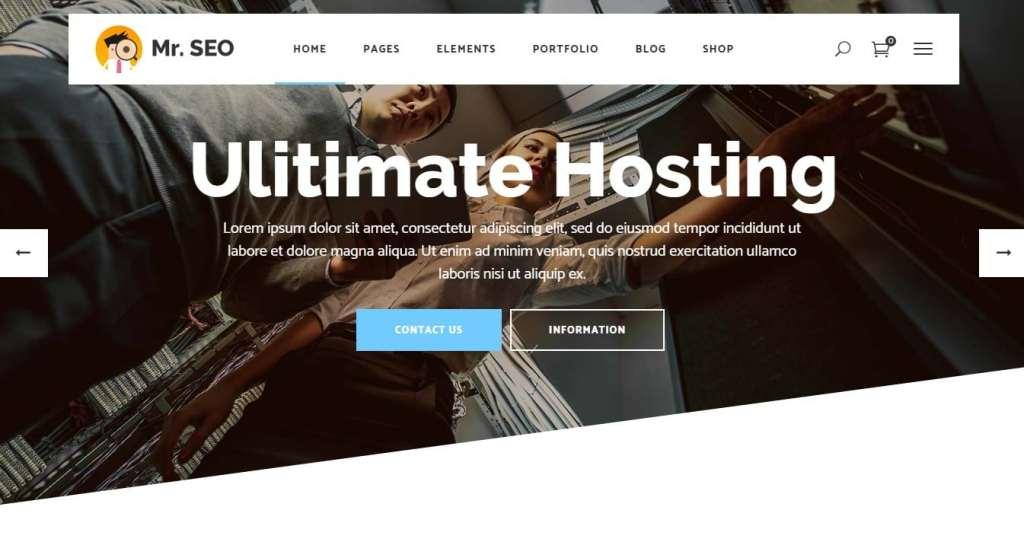 шаблон сайта хостинга с онлайн-оплатой и системой WHMCS 10