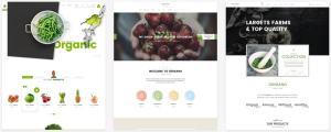 макеты сайтов HTML с возможностью разработки под любую платформу 44