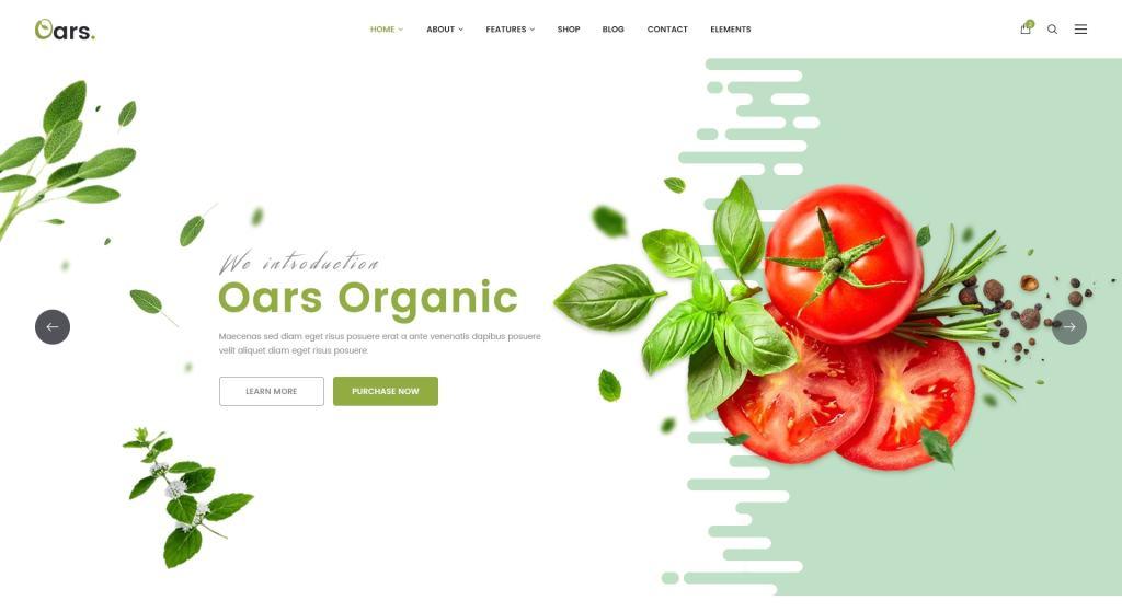 PSD макеты сайтов – 50 дизайнерских концепций для вашего бизнеса 45