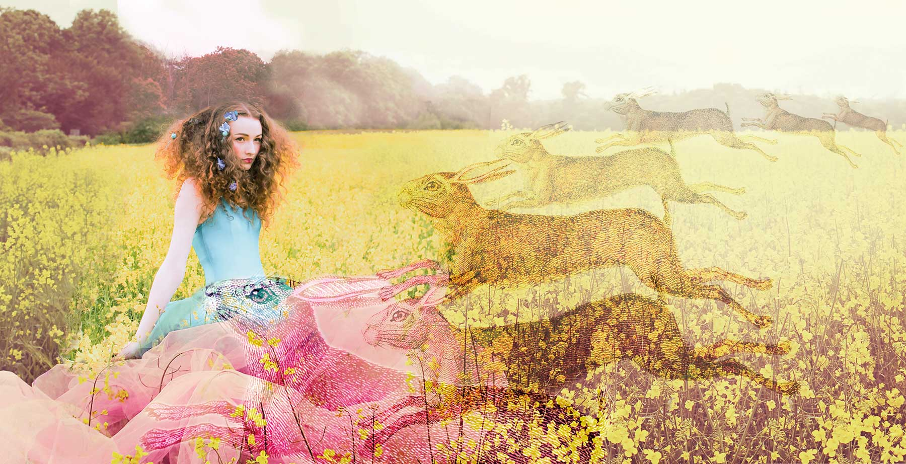 dream sequence of girl in a corn field with hares running towards her