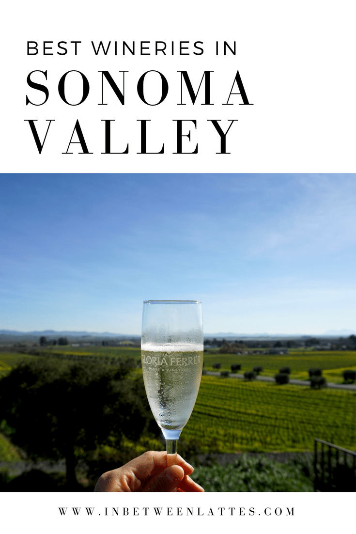 Best Wineries in Sonoma Valley - IN BETWEEN LATTES