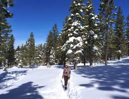 South Lake Tahoe Travel Guide - IN BETWEEN LATTES BLOG 13
