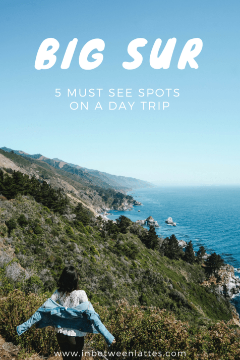 BIG SUR 5 MUST SEE SPOTS ON A DAY TRIP_ IN BETWEEN LATTES