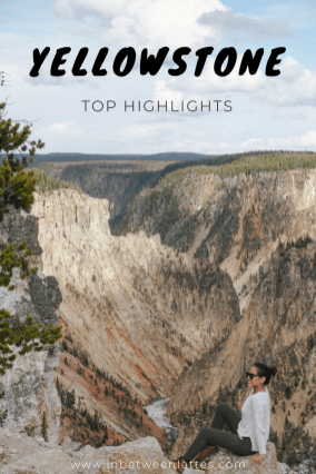 YELLOWSTONE top highlights_ IN BETWEEN LATTES