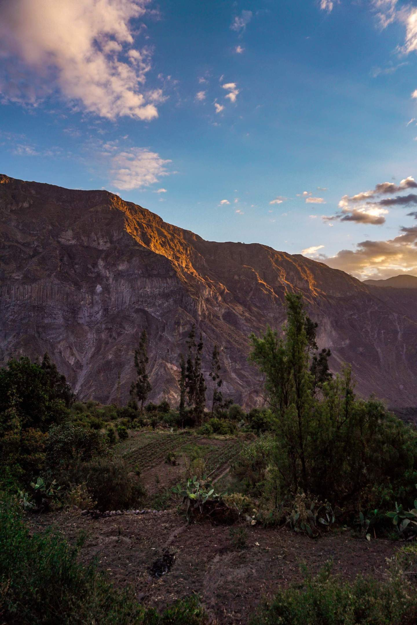 Colca Canyon Peru Self guided tour_14