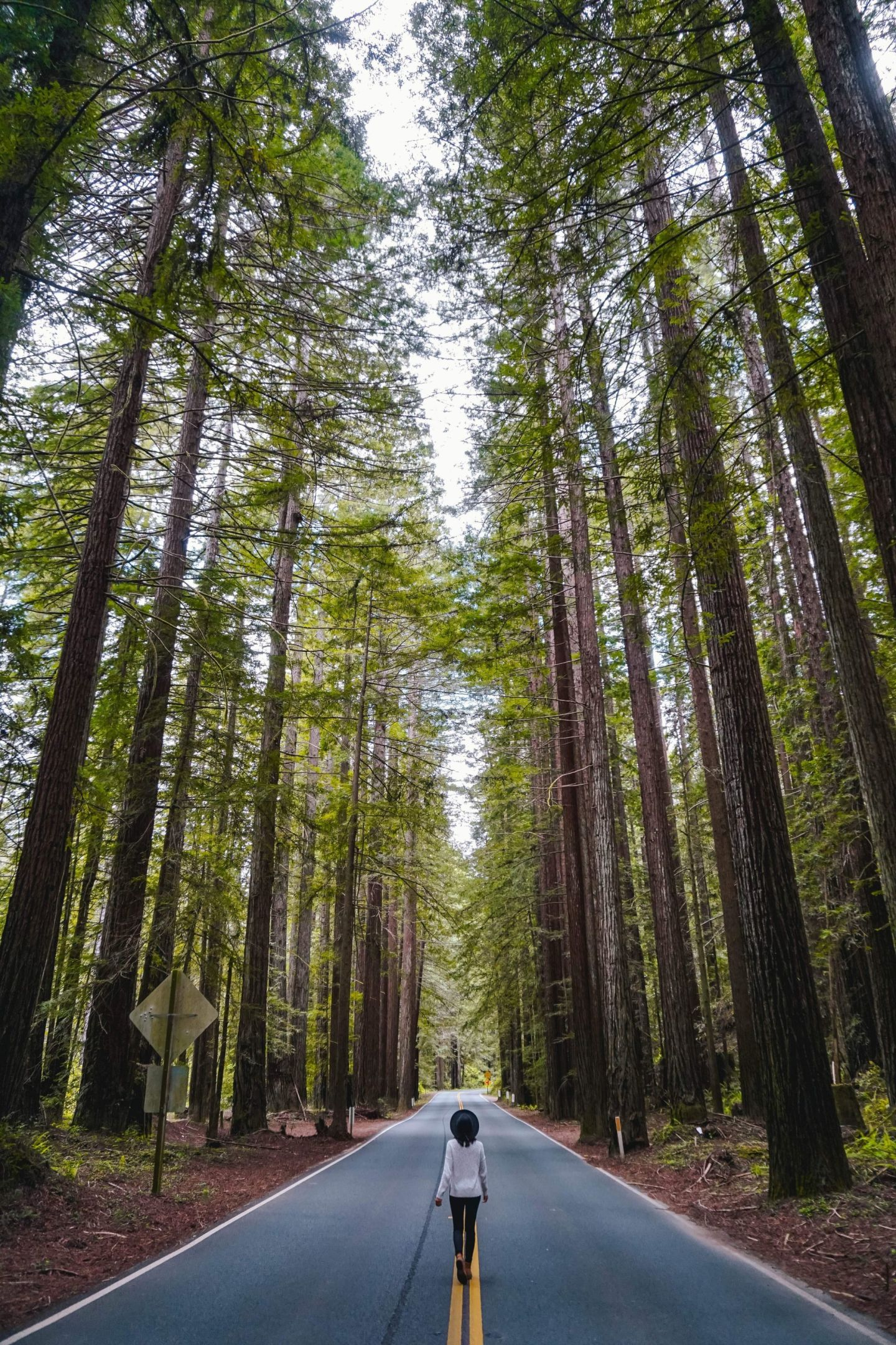8 Off-Beat Day Trip Ideas from San Francisco, California