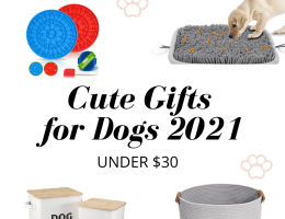Cute Dog Gifts on Amazon under $30