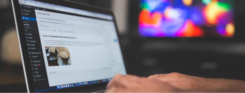 Maximizing the Benefit of WordPress