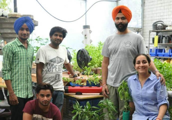 agritech-startup-pindfresh-creates-city-farms-to-grow-pind-style-veggies