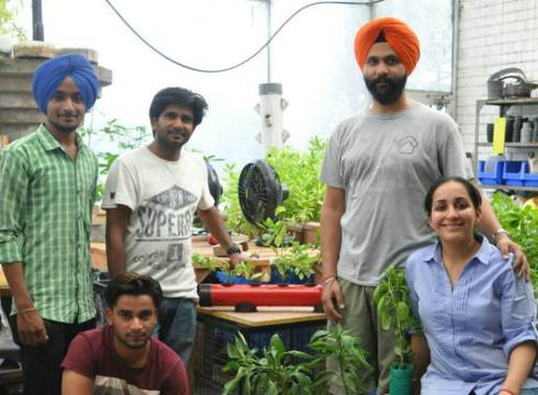 agritech-startup-pindfresh-creates-city-farms-to-grow-pind-style-veggies