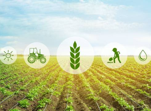Agritech Startup WayCool Looks To Expand South With $16.9 Mn Funding