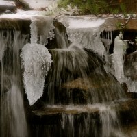Zunday Zen ... Frozen