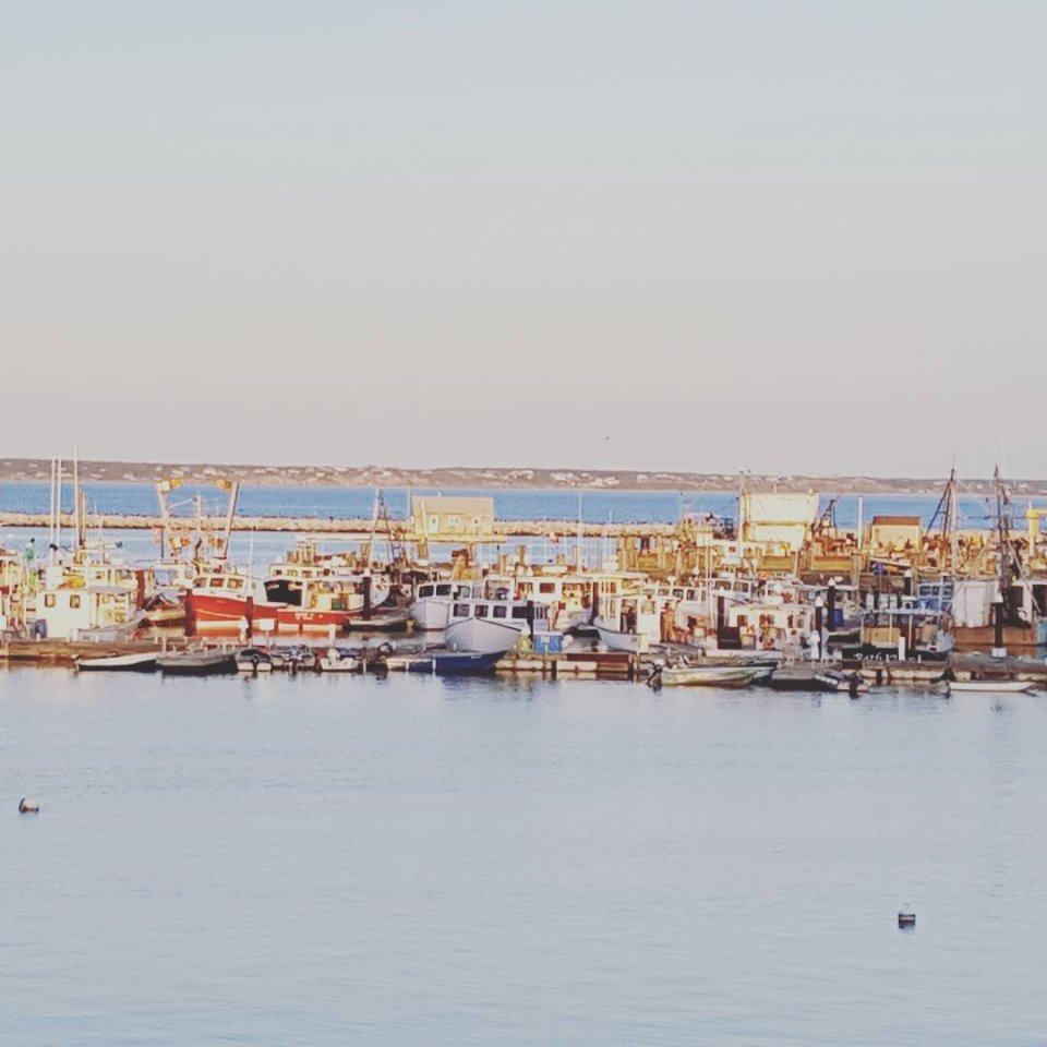 view of the harbour of Provincetown
