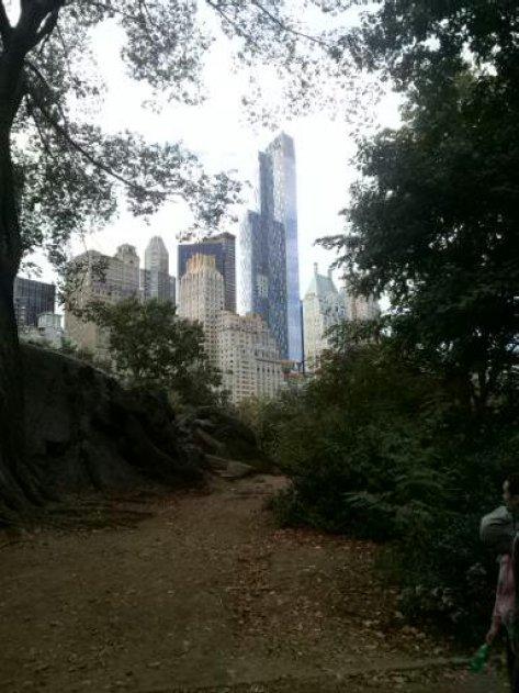 Central Park New York City with skyline