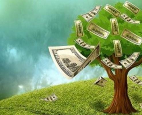 L'immagine mostra un albero rigoglioso e pieno di foglie con tante banconote al posti dei frutti e molte altre che svolazzano al vento