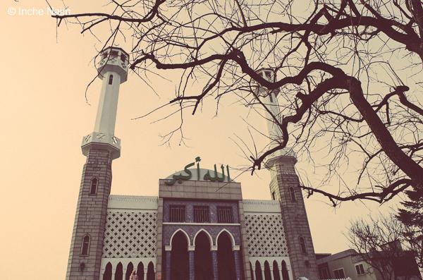 Pakej Percutian Muslim Ke Korea