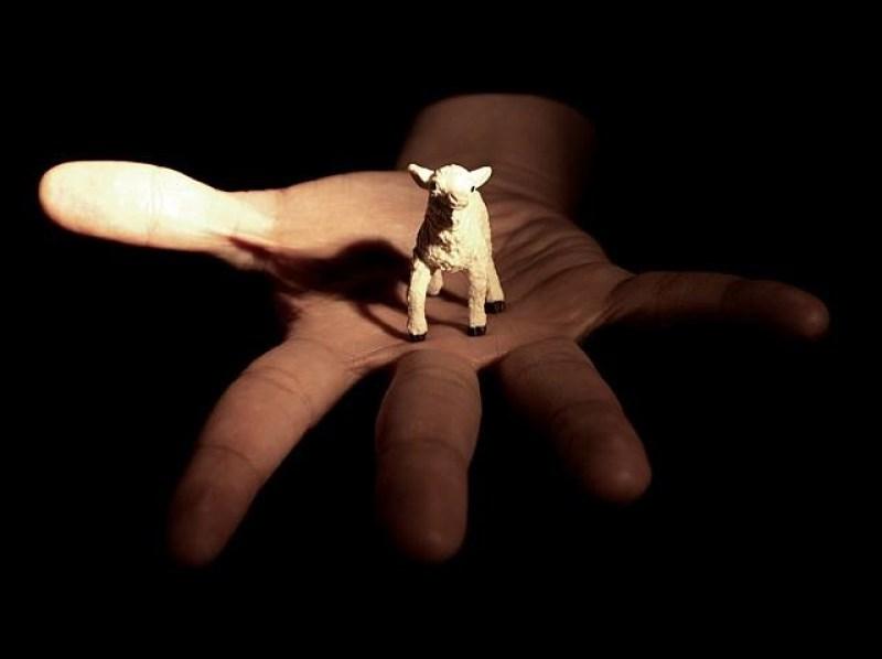 David Lynch, Untitled (Insane Lullaby #4), da Dark Night Of The Soul, 2009.