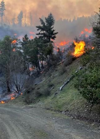 Image of the Elk Fire burning on a steep mountain hillside